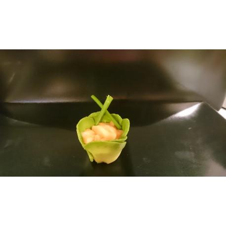 Tulipe Saumon