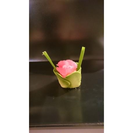 Tulipe Thon rouge